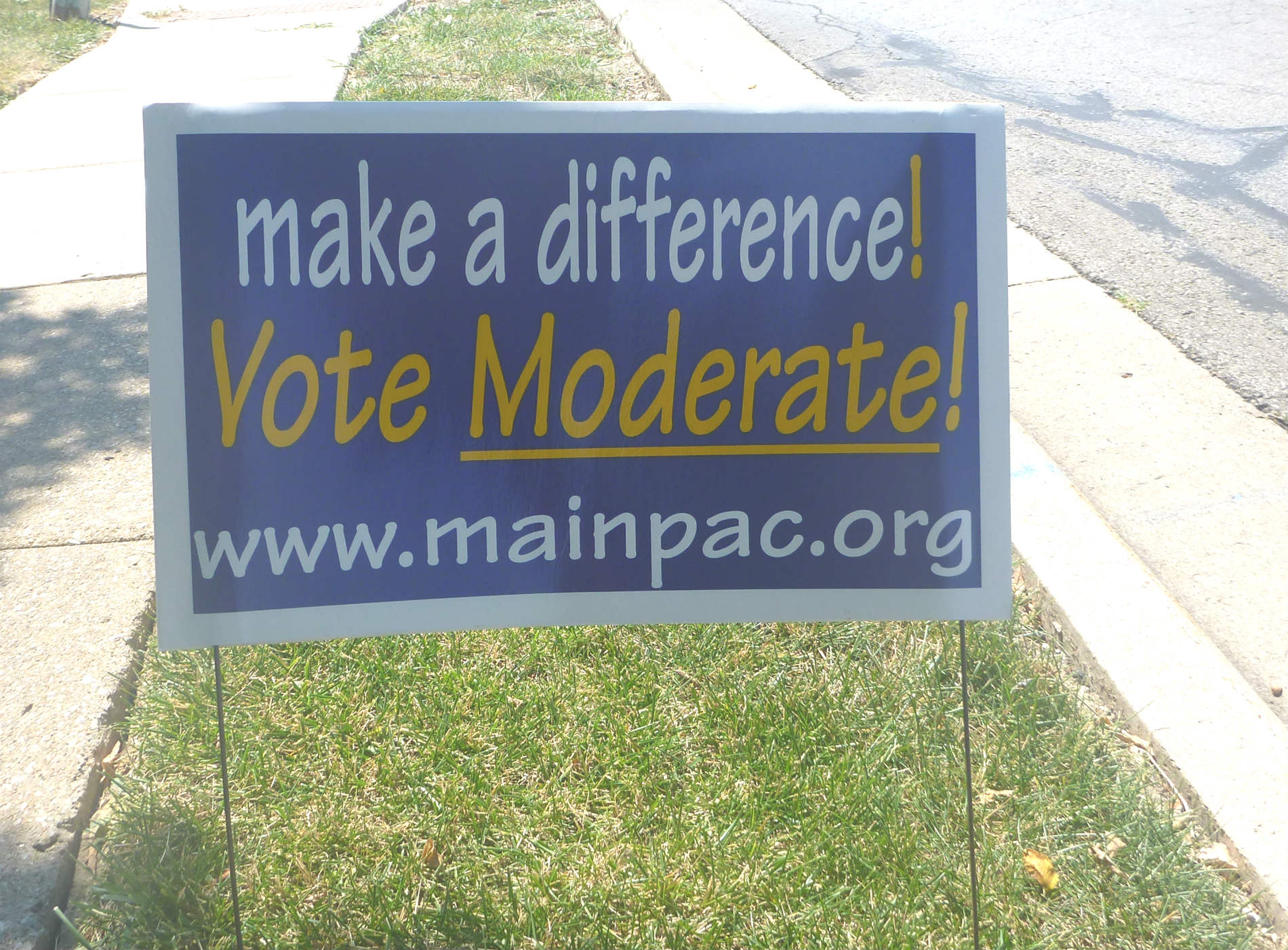 Vote moderate placard