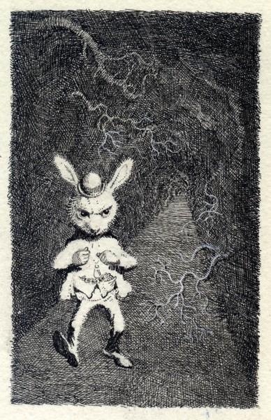 The White Rabbit-1