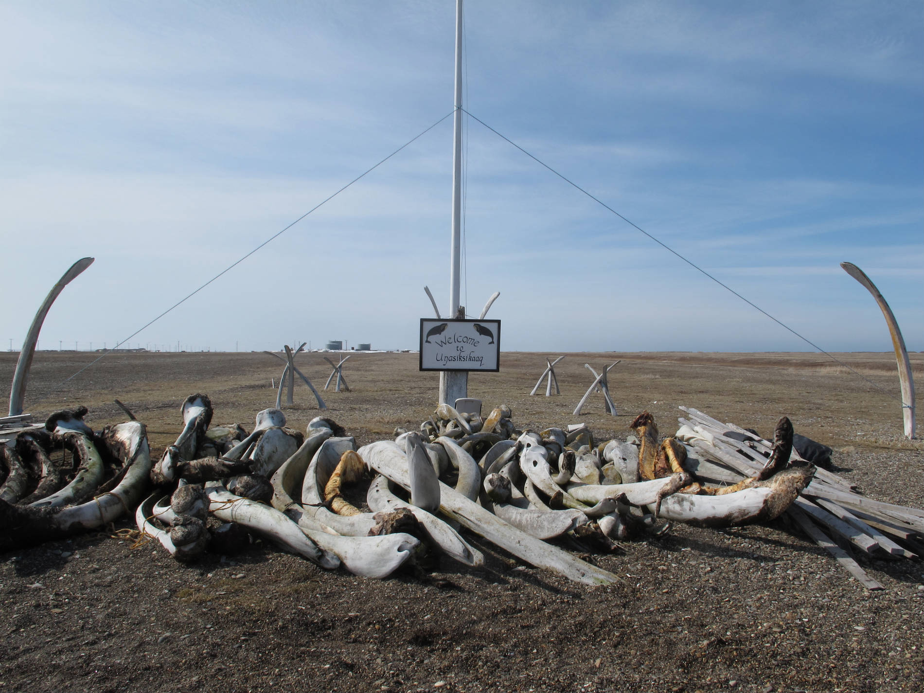 Adam Weymouth Whale bones