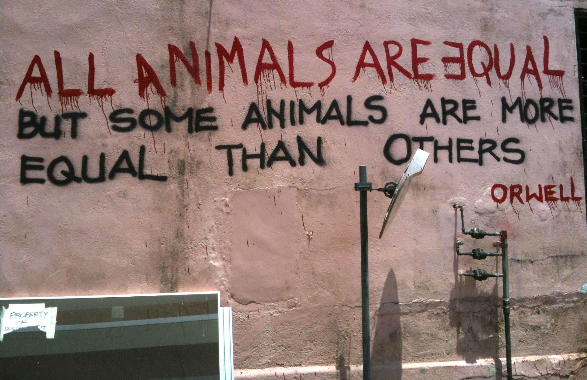 Orwell's Animal Farm by Kevin Lim