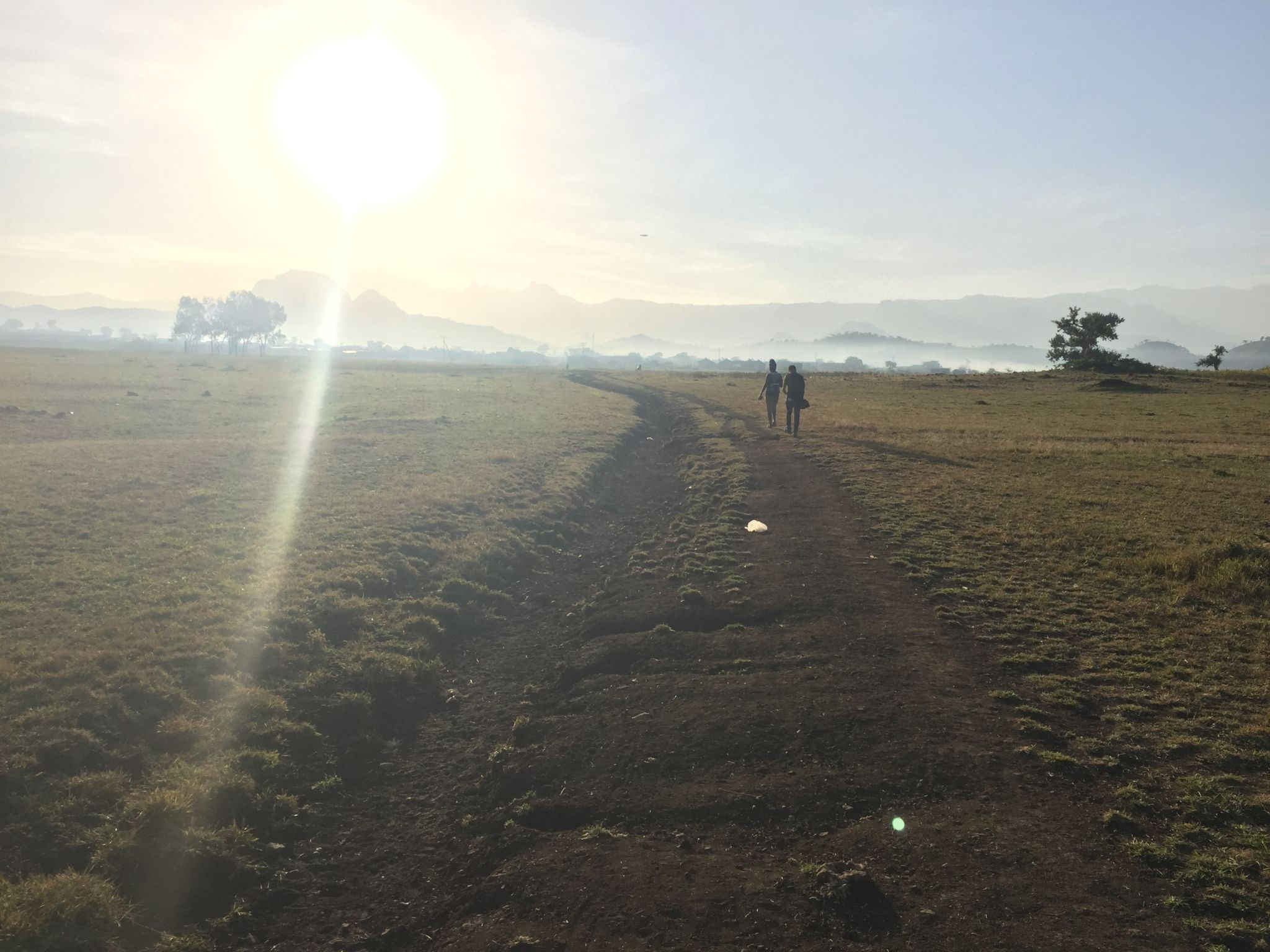 Image of Nakfa walking along through a field with sun rising in the background. Shadows of mountains loom in the distance.